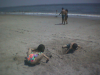 aviva_schueli_digging_at_coney_island.png -