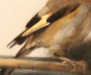 fab_goldfinch.png -