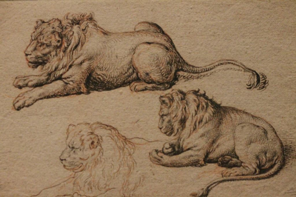 Jocab de Gheyn -     Loins drawings