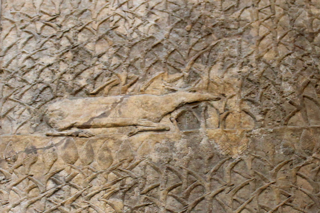 Assyrian Deer