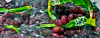 grapes.png -