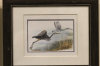 first_nation_egret_calgery_flying.png -
