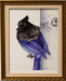 stella_blue_jay.png -