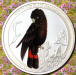 red_tailed_black_cockatoo_flowers_o.png -