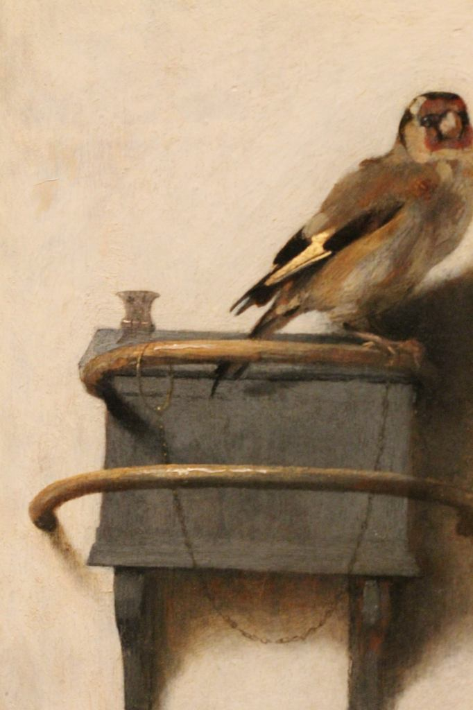 Fabritius - The Goldfinch