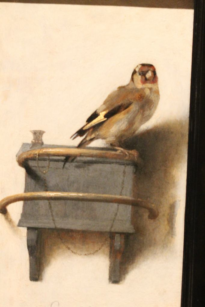 Fabritius - The Goldfinch